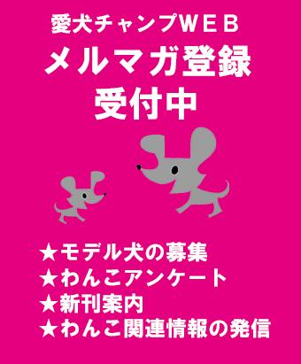 2020.5.11 愛犬チャンプWEB メルマガ会員募集